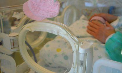 Un caso su un milione: è nata a Torino la bambina con cuore e fegato fuori dal corpo