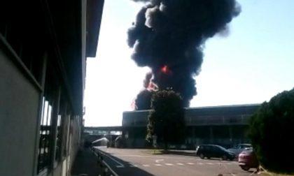Maxi incendio alle porte di Torino, il fumo si vede a 50 km
