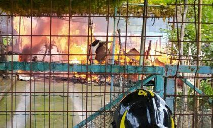 Bruciano capanni agricoli: cascina completamente distrutta dalle fiamme