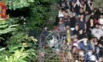 Nuovo attacco No Tav in Val Susa IL VIDEO