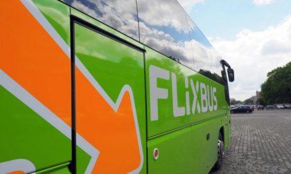 FlixBus riparte: da Torino riattivate tratte per 80 mete (prima della pandemia erano oltre 200)