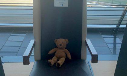 A Caselle un orsacchiotto di pezza sta aspettando il suo amico