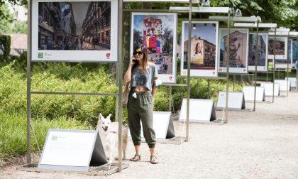 Torino ambasciatrice della sostenibilità grazie all'arte urbana