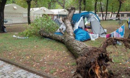 Albero s'abbatte sulla tenda di una famiglia di Torino: morte due bambine