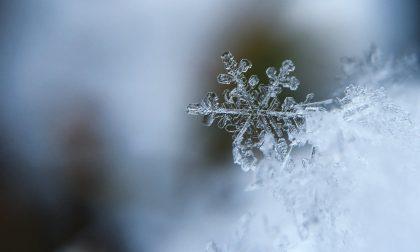 La prima neve non si scorda mai (anche se sono solo 5 cm)
