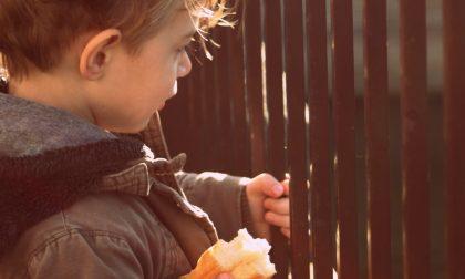 Torino Solidale: consegnati pacchi alimentari a 10mila nuclei familiari