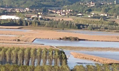 Maltempo Piemonte: il bilancio è di due morti