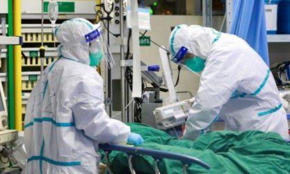"""Covid-19: l'ordine dei medici di Torino chiede un """"immediato lockdown"""""""