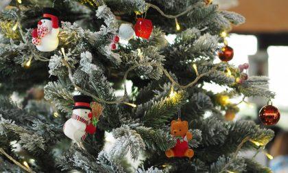 Shopping natalizio notturno: ruba in negozio 15 confezioni di luminarie di Natale