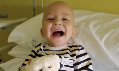 Diego si è arreso alla leucemia a soli 20 mesi: addio piccolo leone