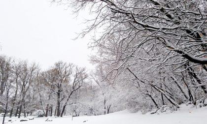 Resta l'allerta gialla in Piemonte: pericolo neve