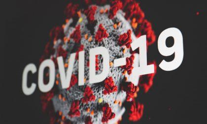 Covid, i dati di oggi 22 dicembre 2020 | + 647 positivi in Piemonte