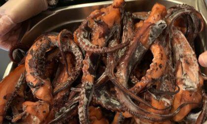 Carne e pesce mal conservati, sequestrati 26 chili di alimenti in un ristorante