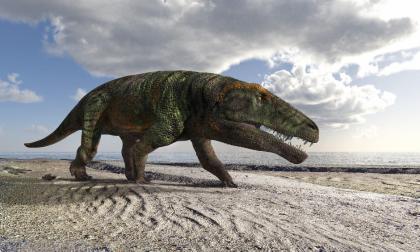 Alpi occidentali: scoperta l'impronta di un grande rettile vissuto 250 milioni di anni fa