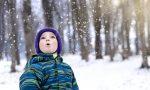 Occhio al cielo: questa sera potrebbe cadere qualche fiocco di neve