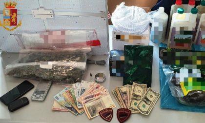 Arrestato spacciatore trovato con marijuana: a casa aveva un kit per una serra indoor