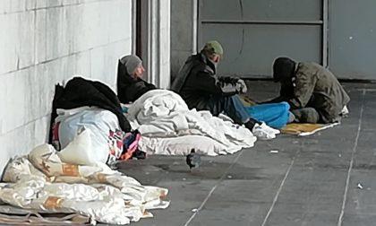 Elemosine ai senzatetto: pioggia di critiche sulla Appendino
