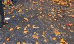 Battaglia delle arance nel cortile di casa: sette le sanzioni per i nostalgici del Carnevale di Ivrea