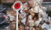 Sequestrati in un minimarket 160 chili di carne e pesce mal conservati