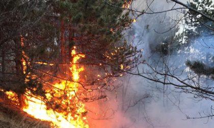 Incendi boschivi, scatta lo stato di massima pericolosità in tutto il Piemonte