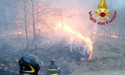 Incendi boschivi e piromani, la Regione Piemonte vara il piano a tolleranza zero