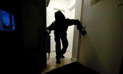 Ruba il gasolio ai bambini dell'asilo: arrestato ladro 29enne