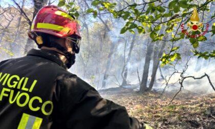 Incendio nei boschi della Valle di Susa: le foto dell'intervento dei Vigili del Fuoco