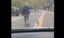 I vigili scortano mamma anatra e il suo anatroccolo per attraversare senza pericoli
