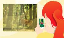 Una app sui telefonini per controllare la selvaggina: siamo tutti guardie ecologiche