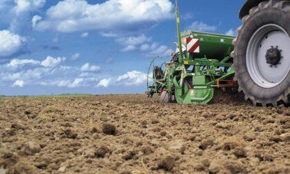 Gelate e crollo delle temperature, agricoltori alle prese con gravi danni alle colture