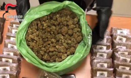 Sgominata banda dedita allo spaccio di stupefacenti: sequestrati 11 chili di hashish e 3 di marijuana