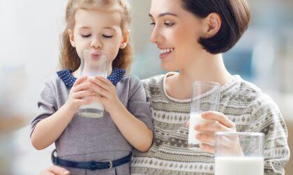 Il latte, che bontà: impariamo ad amarlo fin dalle scuole elementari