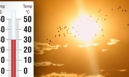 Caldo in arrivo: in settimana la prima vera prova dell'estate 2021