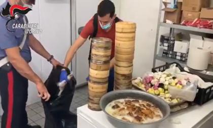 750 chili di carne e pesce mal conservati, chiuso ristorante giapponese