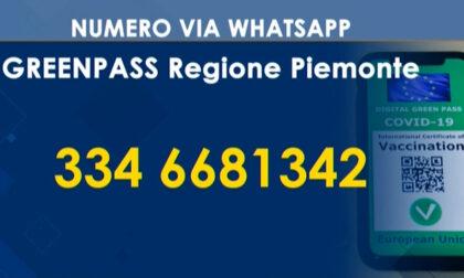 Numero dedicato via whatsapp per informazioni sul Green pass