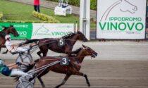 Grand Prix di livello per il 60esimo compleanno dell'ippodromo di Vinovo