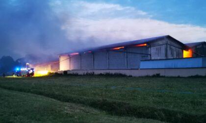Brucia una stalla a Castellamonte, danni e tre bovini morti
