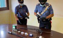 Gelsomino, palme e marijuana nel giardino della sua ditta: 60enne arrestato dai carabinieri