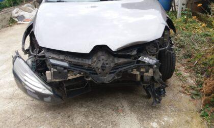Dramma sfiorato: auto finisce contro un cinghiale sulla ex590