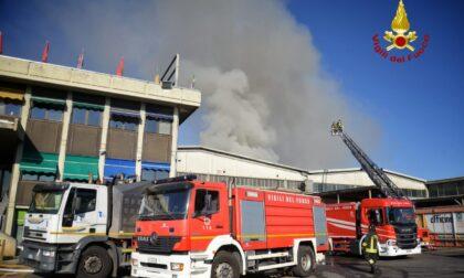 Torino, incendio in via Paolo Veronese: donna intossicata, tenete le finestre chiuse