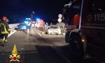 Cinghiali attraversano la tangenziale: ambulanza e 2 auto coinvolte nell'incidente